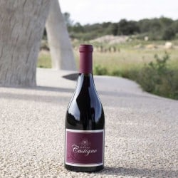 Château Castigno : Grand Vin Rouge - AOP Saint-Chinian rouge
